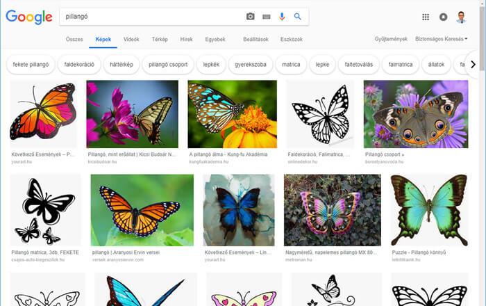 Google Képek képkereső szolgáltatás minta